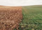 bnp-paribas-ecosystem-restoration-un-fonds-pour-restaurer-les-ecosystemes